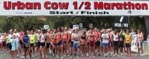 Urban Cow Half Marathon Banner
